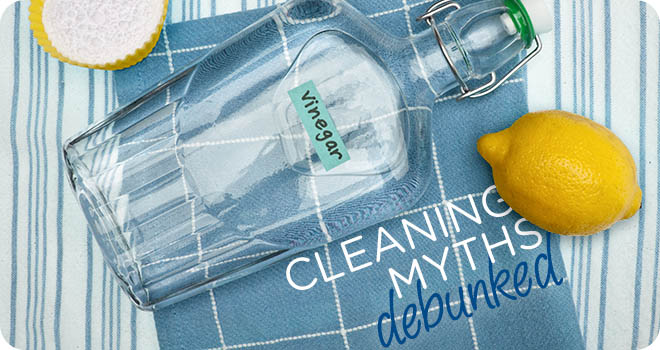 Cleaning Myths Debunked: Vinegar - MaidPro Home Cleaning